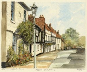 Much Hadham by Philip Martin