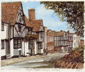 Bishop's Stortford by Philip Martin