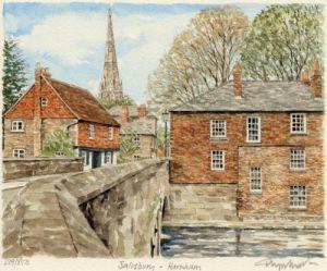 Salisbury - Harnham by Glyn Martin