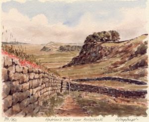 Hadrian's Wall nr Housesteads by Glyn Martin