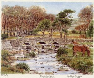 Dartmoor - Postbridge by Glyn Martin