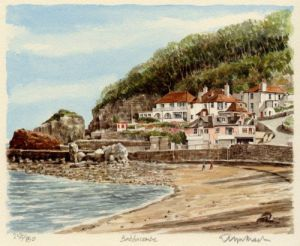 Babbacombe by Glyn Martin