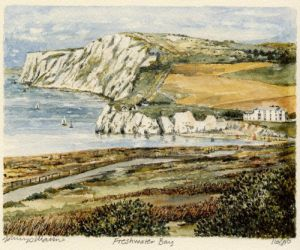 Freshwater Bay by Philip Martin
