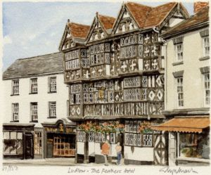 Ludlow - 'Feathers' by Glyn Martin