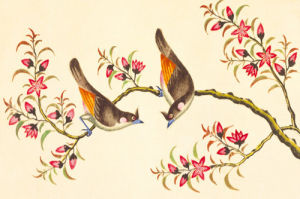 Birds And Flowers on Branch by Anonymous