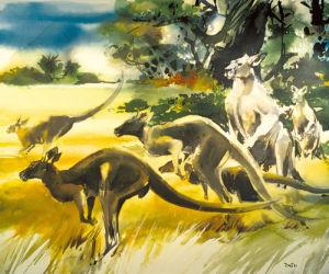 Kangaroo by Wolfgang Weber