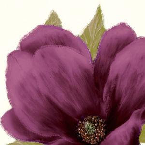 Grandiflora Blush II by Linda Wood