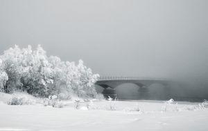 Bridge of Wonder by Andreas Stridsberg