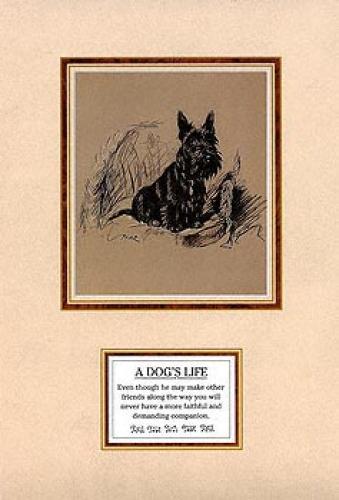 Dog's Life II by 'Mac' (Lucy Dawson)