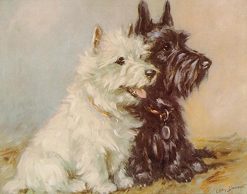 Scotch Terriers by Mac Lucy Dawson