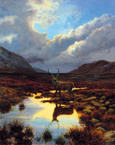 Mountain Mirror by Elizabeth Halstead