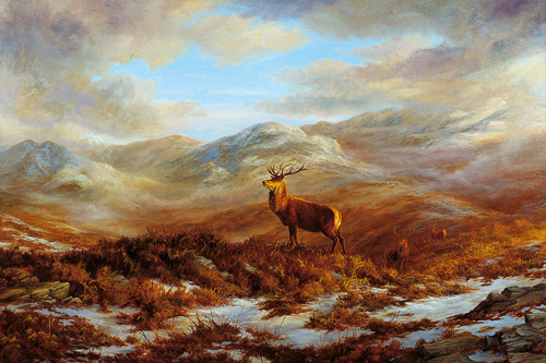 Valley of the Stags by Elizabeth Halstead