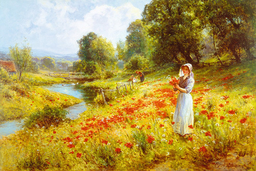 Flowers of the Field by Ernest Walbourne
