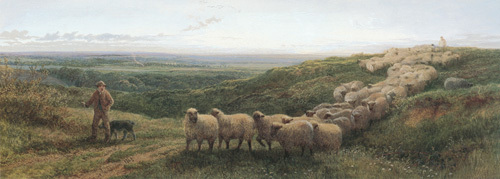 The Old Sheep Trail by George Shalders
