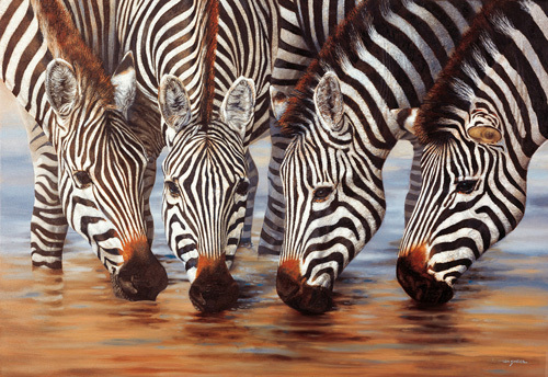 Stripes by Henk van Zanten