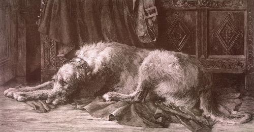Irish Wolfhound by Herbert Thomas Dicksee
