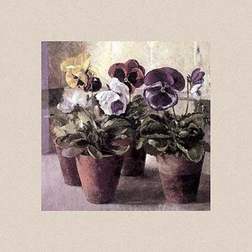 Pansies in Flowerpots by John Morley