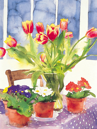 Tulips and Primulas by Richard Akerman