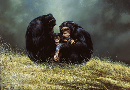 Family Portrait by Spencer Hodge