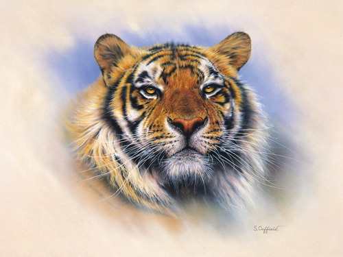 Tiger Tiger Burning Bright by Stuart Coffield