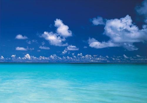 Island Dream by Chris Simpson