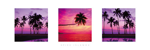 Spice Islands by Anonymous