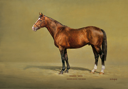 Sadler's Wells by Susan Crawford