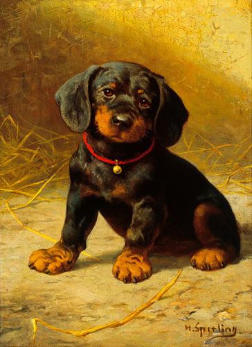 A Puppy by Heinrich Sperling