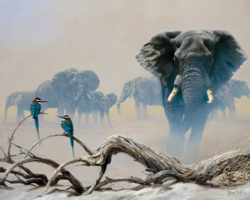Away from the herd by Spencer Hodge