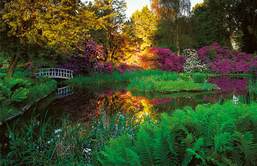 Secret Garden I by Bent Rej