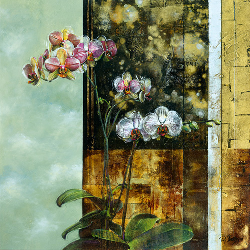 Anant Orchid II by Dennis Carney