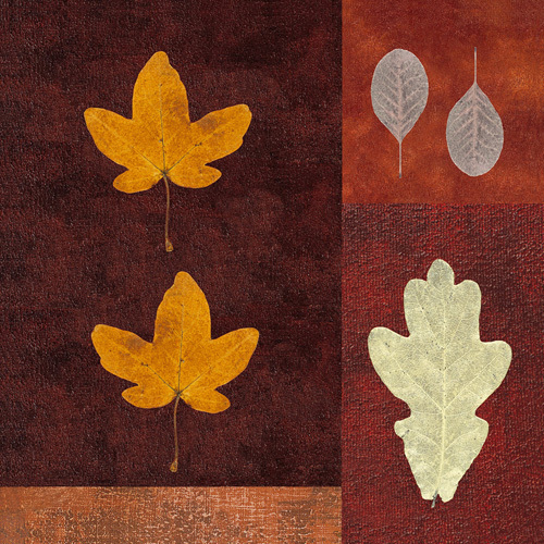 Amber Leaves I by Max Carter