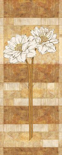 Flora Blanca I by Linda Wood