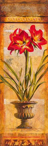 Rojo Botanicals III by John Douglas