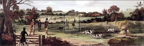 Partridge shooting by Henry Alken