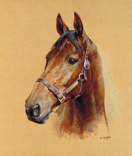 Legend (Best Mate) by Susan Crawford