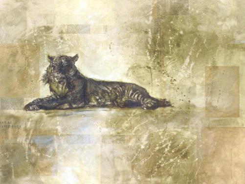 Tiger Profile by Marta Wiley