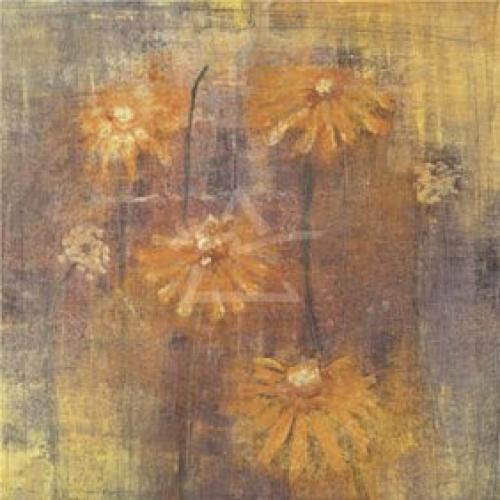 Chiaroscuro II by M. Harris