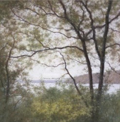 Lakeside Trees I by John Folchi