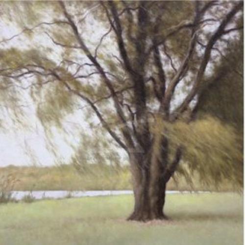 Lakeside Trees II by John Folchi