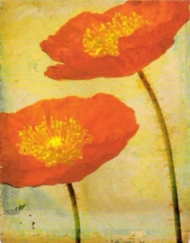 Fiori by Linda Maron