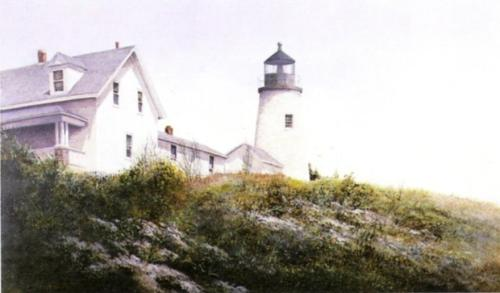 Gulls at Pemaquid by Ray Hendershot