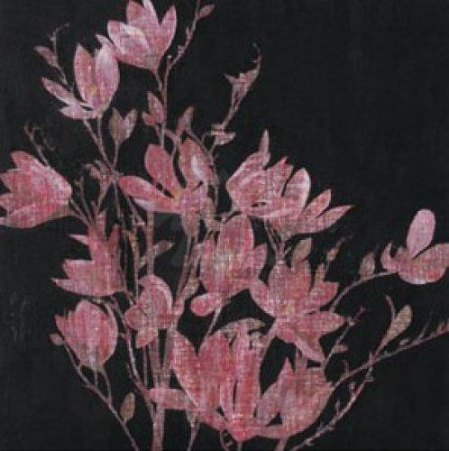 Magnolia, 2005 by Amiryani