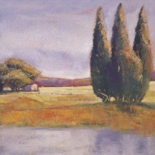 Sunset Cypress by Adina Lankford