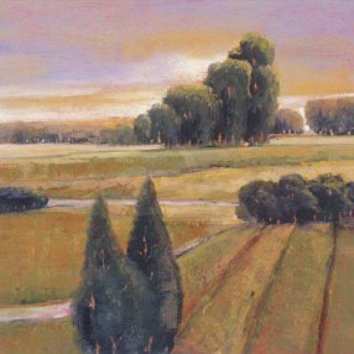Summer Cypress by Adina Lankford