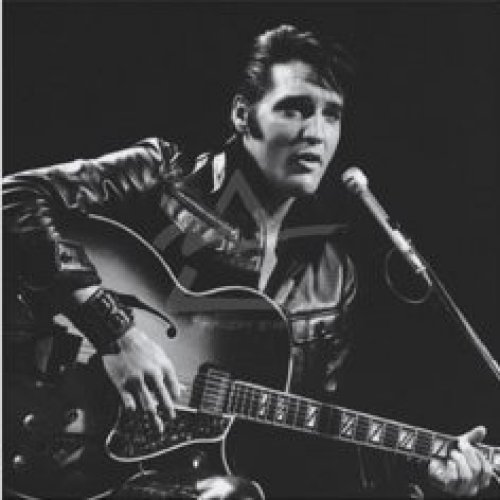 Elvis, 1968 by Celebrity Image