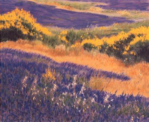 Sommer in der Provence by Eleonore Baur-Brinkman