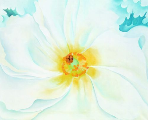 White Flower by Georgia O'Keeffe