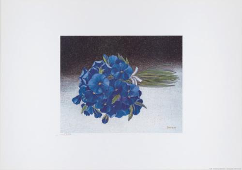 Strauß blaue Stiefmütterchen by Heide Dahl