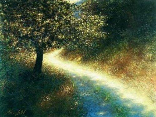Waldweg im Sonnenlicht by Lutz Münzfeld